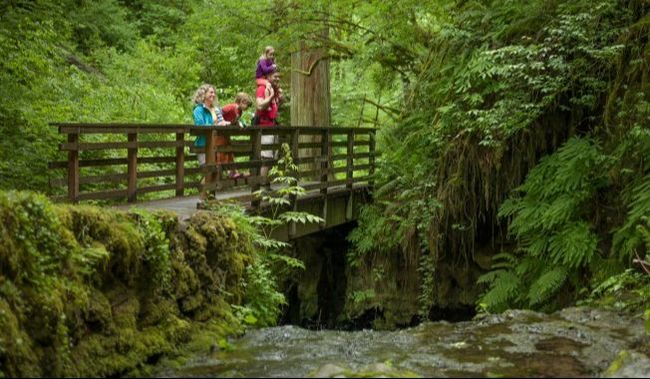 Natural cool awaits under wooded canopies and along bubbling streams... more ways to stay cool in Portland from pregnancy to preschool at adjoyn.com [Image of a family standing on a foot bridge surrounded by lush green forest.]