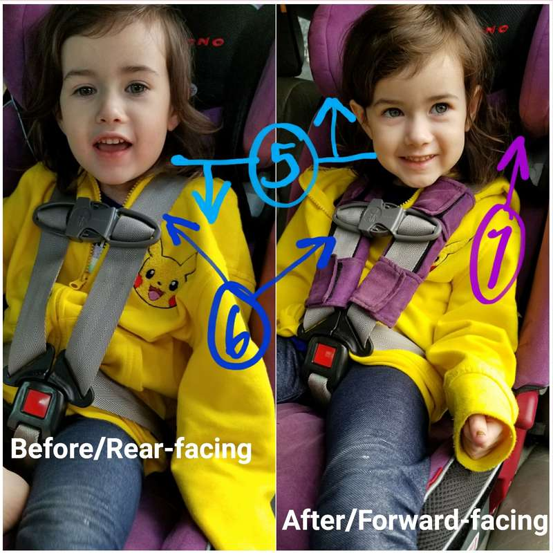 Adjusting the harness when switching to forward-facing with a child under 40 lbs in a Diono [Image is a collage of two photos. Both photos feature a young white girl with light brown hair, sitting harnessed in a purple car seat. Text on the left photo reads quote Before/Rear-facing, end quote. Text on the right side photo reads quote After/Forward-facing, end quote. There are numbers drawn on the image in different colors and with arrows to point out key features. Number 5 is blue and marks a straight line at the girl's shoulders, with an arrow pointing down from the line on the left/rear-facing image and an arrow pointing up from the line on the right/forward-facing photo. Number 6 is indigo and points to the harness in both images; on the left rear-facing there is not harness pad while on the right/forward-facing a purple harness pad surrounds the harness at the chest clip. Number 7 is violet and points to the head rest on the right/forward-facing photo, which is higher than in the left/rear-facing photo.]